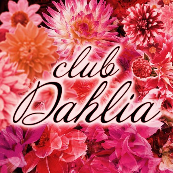 関内 club Dahlia(クラブダリア)